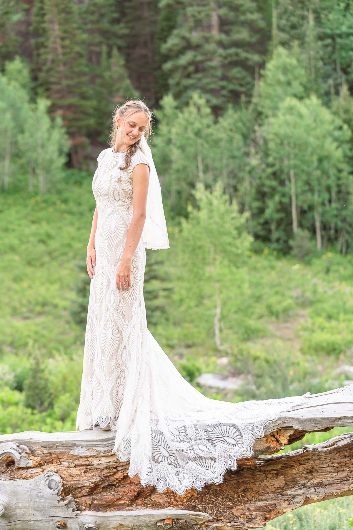 bride standing on log in forest